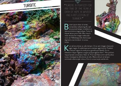 A Cut Above the Rest: A Geological Look Book